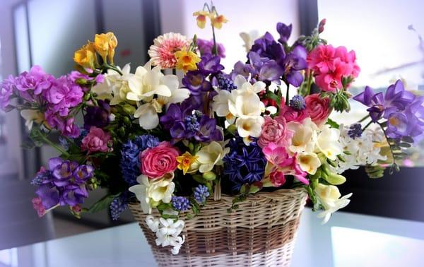 картинки на рабочий стол цветы самые красивые № 516997  скачать
