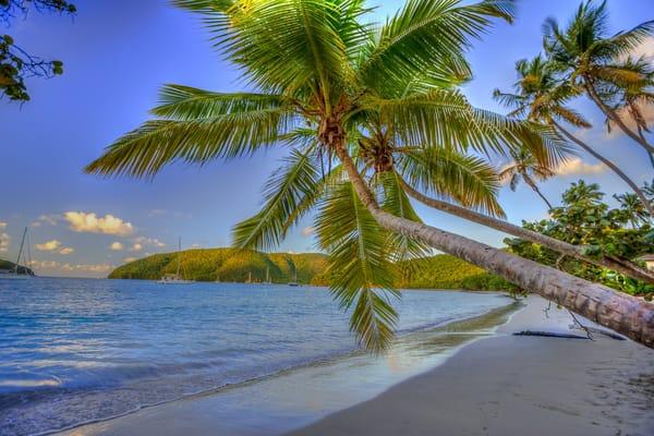 картинки на рабочий стол море пляж пальмы № 258614 скачать